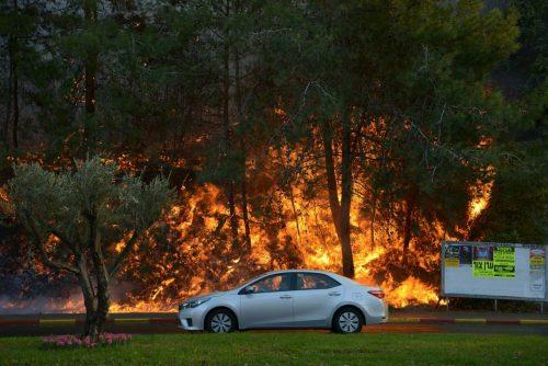 Le fiamme a Haifa, giovedì scorso