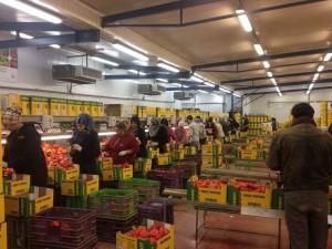 Lavoratori palestinesi in un'impresa israeliana nella zona di Gerico