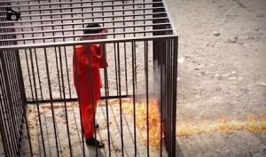 """""""Quando si tratta di jihad, l'orrore è la norma"""""""