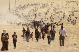 "Estate 2014: yazidi in fuga per l'avanzata dell'ISIS in Iraq: ""xxx"""