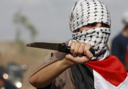 """La definizione di """"lupi solitari"""" non coglie l'ampio sostegno di cui gli attentatori godono nella società palestinese"""